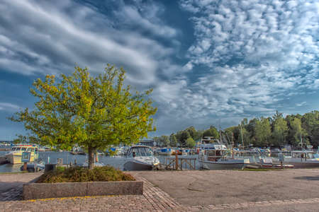 Finland, Kotka 17,08,2019 Tree on the Kotka embankment and yachts at the marina Zdjęcie Seryjne - 138311034