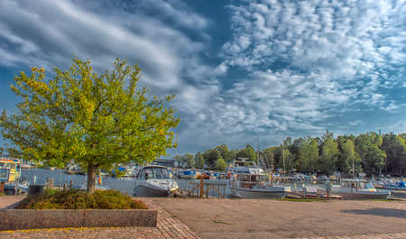 Finland, Kotka 17,08,2019 Tree on the Kotka embankment and yachts at the marina Zdjęcie Seryjne - 138311037