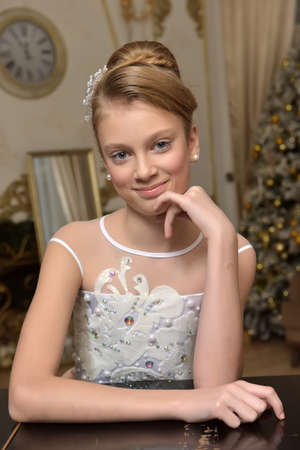 beautiful young girl with evening hairstyle in a dress with embroidery, elbowed portrait