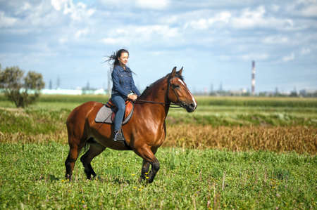happy girl in jeans rides a horse in a field in summer