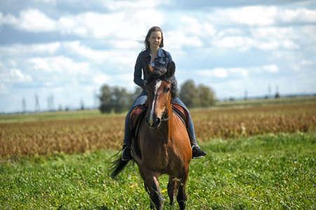 glückliches Mädchen in Jeans reitet im Sommer auf einem Pferd Standard-Bild