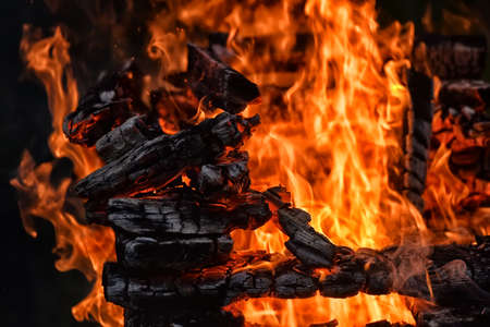 bonfire close- close-up of fire and fire in wood