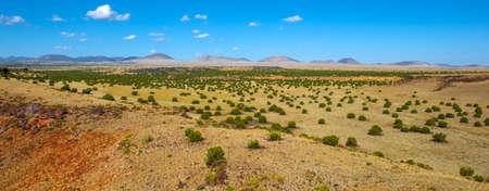 Coconino National Forest near Wupatki National Monument in Arizona, USA