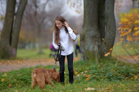 Girl in a white sweater walks with a dog spaniel in the park in autumn