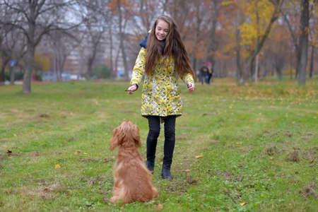 A girl in a jacket walks and plays with a dog spaniel in the park