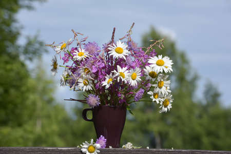 Colorful meadow flower bouquet in a clay mug on a natural background on a sunny day. Summer solstice bouquet