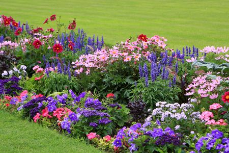 Flowerbed full of flowers in Luxembourg garden photo