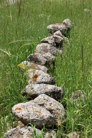 nature reserves of israel: Line of stones at the Gamla Nature Reserve, Israel
