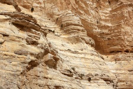 ein: Ein Avdat canyon in the Negev Desert, Israel