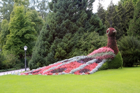 Flowerbed at Mainau island in Lake Constance, Germany