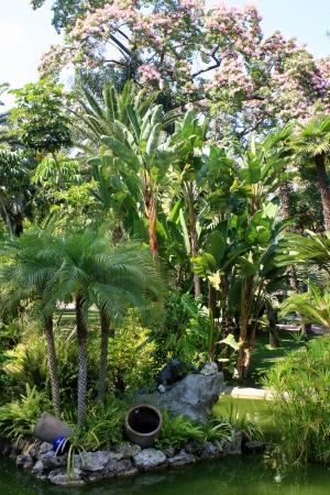 Park and garden in Monte Carlo, Monaco