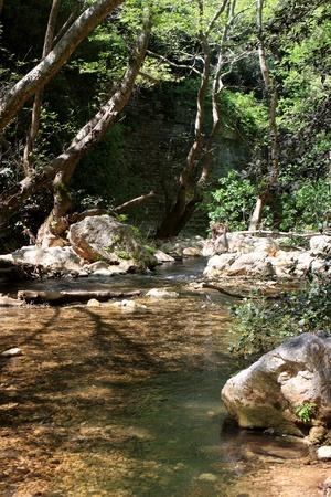 nahal: Nahal Kziv  Kziv stream  in the Upper Galilee, Israel