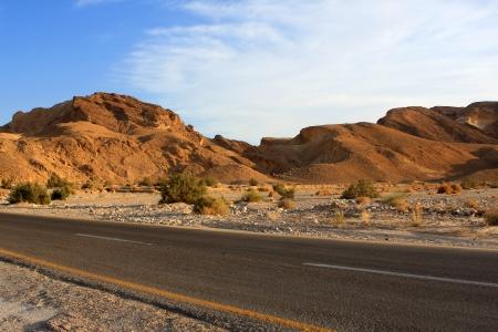 negev: Empty road in the Negev desert, Israel