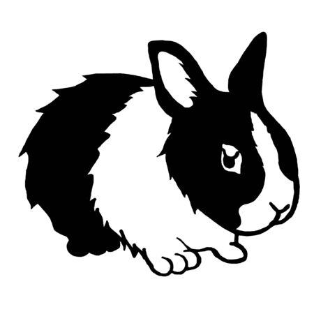 lowbrow: Cartoon rabbit  Stock Photo