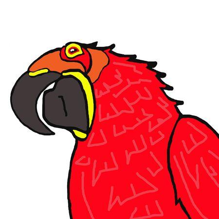 endanger: Parrot