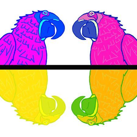 naturalist: Parrot