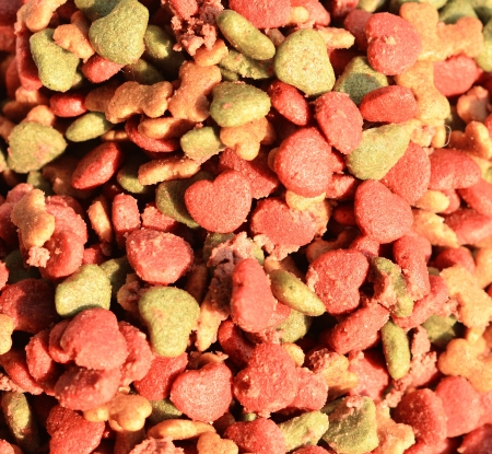 Dry dog food on  background photo