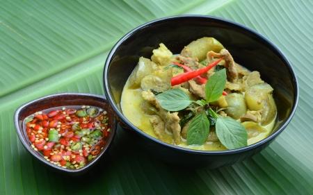 Green pork Curry , Thai cuisine Stock Photo - 18144035