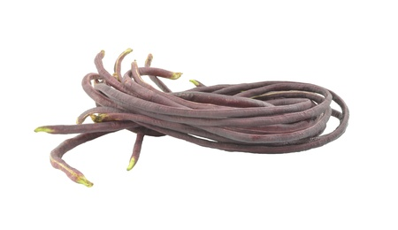 yard long bean bean isolated on white background Stock Photo - 18197624