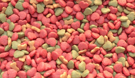 Dry dog food on white background photo