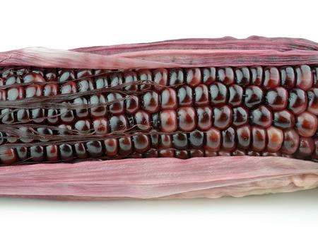 Purple corn photo