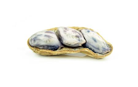 goober peas: peanut on white Stock Photo