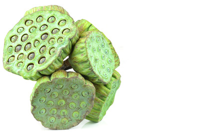 lotus seeds: Lotus seeds green Isolated