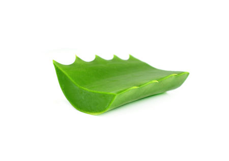 vermiculture: aloe vera fresh leaf. isolated over white Stock Photo