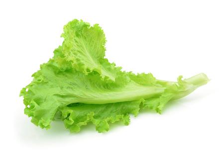 lechuga: lechuga verde fresco deja aislado en blanco