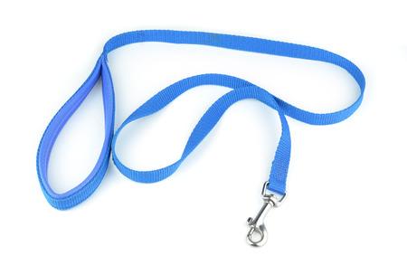 dog on leash: Correa del perro azul