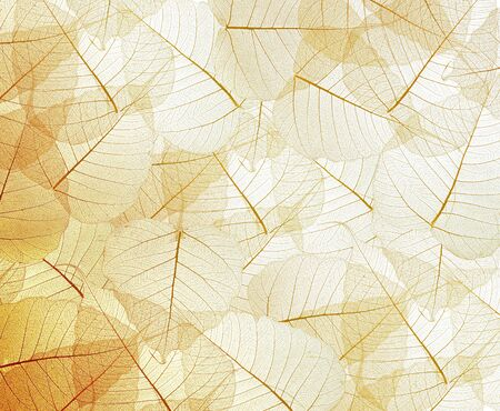 leaves red texture background Standard-Bild