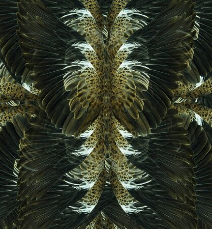 Abstract decorative design pattern of black feather texture