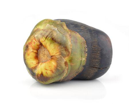palmyra palm: Asian Palmyra palm