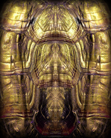 ancient turtles: turtles back background texture