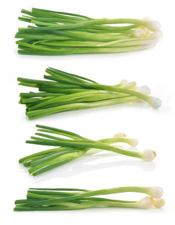green onion: Green Onion on white background Stock Photo