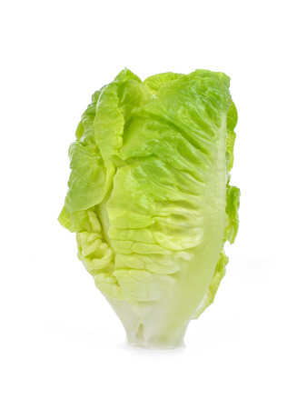 Chinese Cabbage  isolated on white Stock Photo
