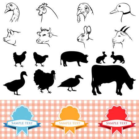 porcellini: animali da fattoria, telaio vintage, etichette alimentari illustrazione