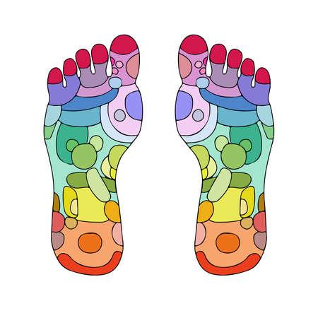 Reflexología pie masaje puntos de zonas de reflexología, masaje signos y puntos de colores Foto de archivo - 21016844