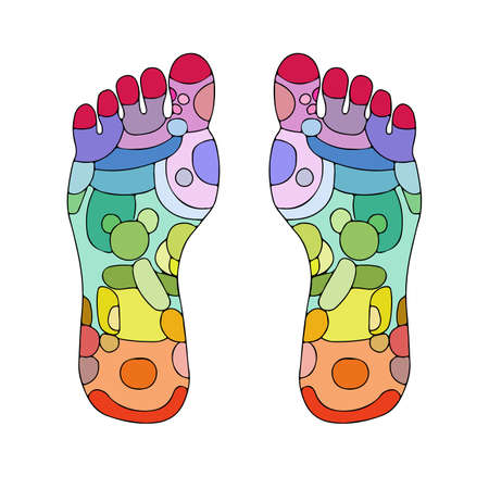 receptors: Reflexology foot massage points reflexology zones, massage signs and colored points Illustration