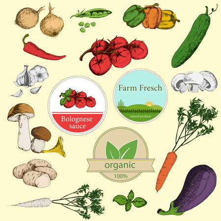 Collection of vegetables and labels Vector