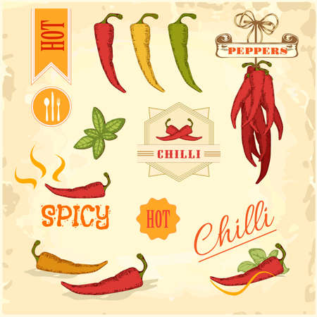 spicy chilli: chilli, chili, pepper vegetables, product label packaging design