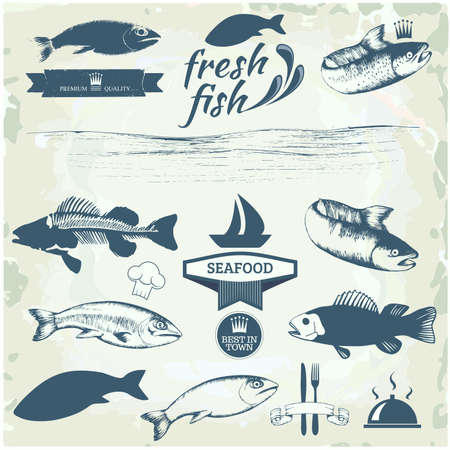 sardine: Etichette di frutti di mare, packaging design di pesce, pesca elementi logo