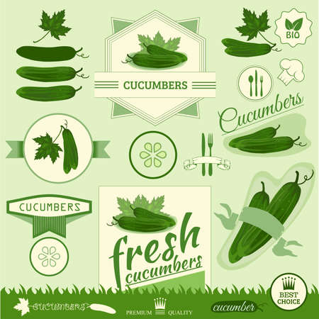 cucumber, vegetables, food product label,background packaging design Vector