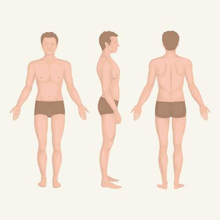 espalda: Anatom�a del hombre del cuerpo, frontal, posterior y lateral actitud permanente