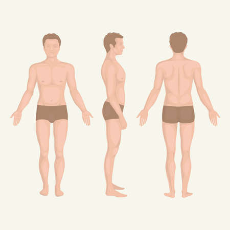 male fashion model: man body anatomy, front, back and side standing pose