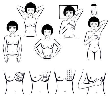 beautiful breasts: self exam breast cancer examination Illustration