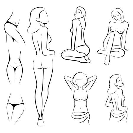 female sexy, intime, beauty body outline parts,  Vector