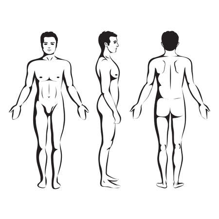 man body anatomy, front, back and side standing vector human pose  Çizim
