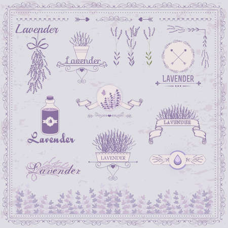aromatherapy oil:  Lavender background, product label packaging design  Illustration