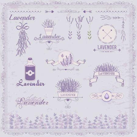 herbals:  Lavender background, product label packaging design  Illustration